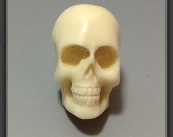 Bull Bone Carving- skull