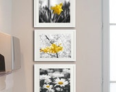 Yellow grey nursery wall art, flower photogrpahy set, botanical print set, 3 11x14, 8x10 art prints, floral pictures modern gallery wall set