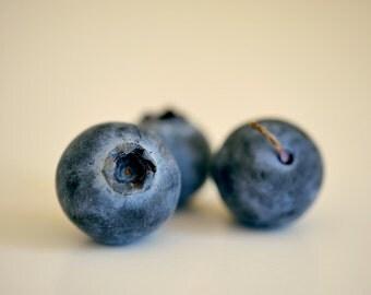 Fruit Art Blueberry Print Modern Kitchen Decor Food Photography Still Life Art For