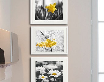 Yellow grey nursery wall art, flower photography set, botanical print set, 3 11x14, 8x10 art prints, floral pictures modern gallery wall set