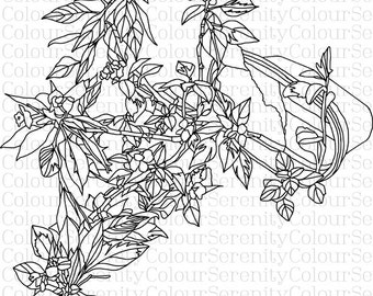 Adult Coloring Page Flower Pot Printable Instant Download #1