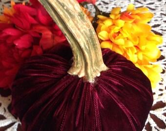 Beautiful Burgundy Velvet Pumpkin with Real Pumpkin Stem