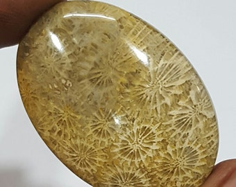87 carat Natural Fossil Coral Cabochon in Oval shape 45 x32 mm for pendant making.LG220
