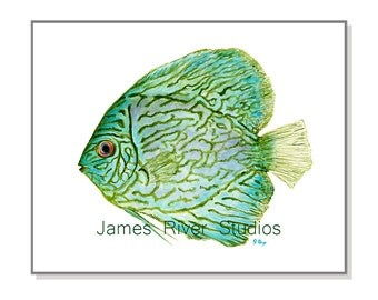 Tropical Fish Art Fish Painting Fish Print. Tropical Painting Fish Watercolor Painting. Beach Decor Beach Art Ocean Art Beach Home Sea Green