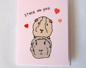 Funny Valentines Day Card - cute animal drawings - hamster - guinea pig - greeting cards