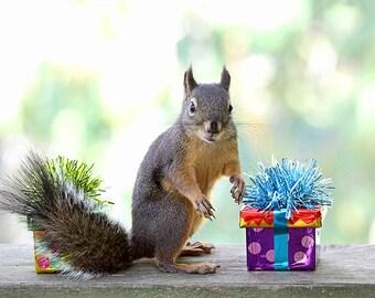 Birthday Print, Birthday Gift, Squirrel Gifts, Funny Birthday, Squirrel Print, Happy Birthday Mum, Birthday Present, Happy Birthday Gift