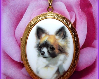 Dogs Porcelain Black Tan White Long Haired Chihuahua Dog Cameo Costume Jewelry Goldtone Locket Pendant Necklace Cameo 24 Inch Chain for Gift