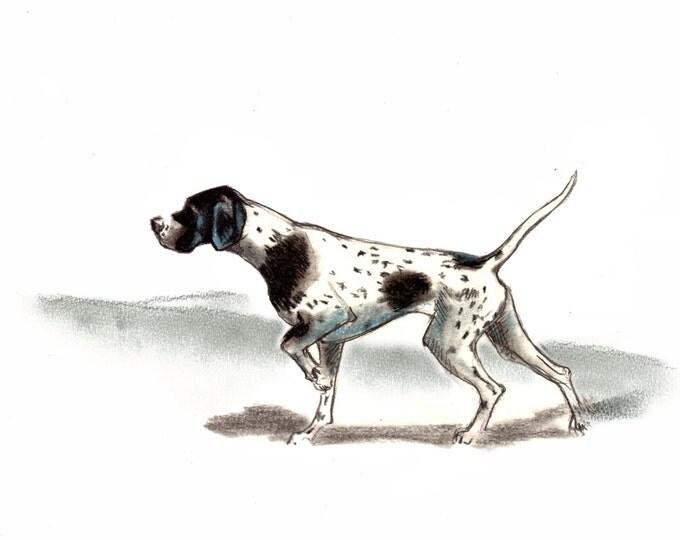 English Pointer  Dog Art Vintage Style Print