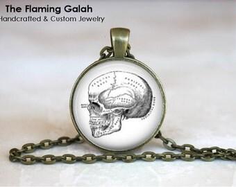 HUMAN SKULL Pendant • Victorian Medical Illustration • Skull Drawing • Anatomy Jewelry • Gift Under 20 • Made in Australia (P0508)
