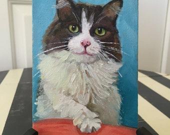 Itty Bitty Kitty 4x6 Original Oil Painting by Renee Brennan Art  - Cat Painting, Pet Portrait, Cat Portrait