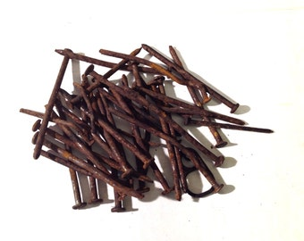25 Bent Rusty Nails Steampunk Industrial Art Craft Gardening Similar to Photo