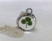 Real Irish Shamrock Pendant Necklace on a Sterling Silver Chain. Nature's Reliquaries Collection