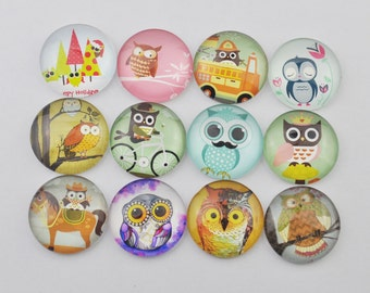 6pcs 25mm mixed Round Handmade photo glass cabs cabochon - Owl.