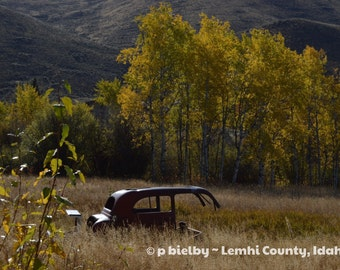 Lemhi Valley Fall
