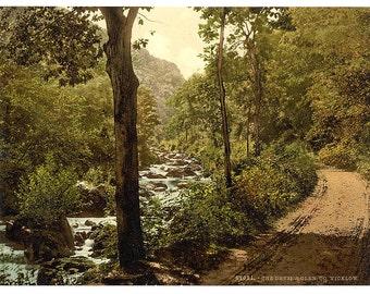 The Devil's Glen. County Wicklow, Ireland] 1890. Vintage photo postcard reprint 8x10-up. Ireland County Wicklow