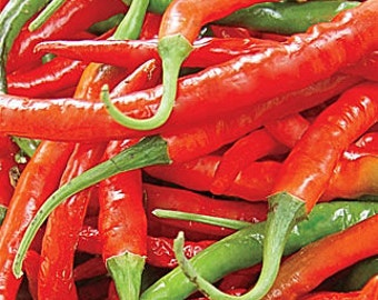 Organic Long Slim Cayenne Pepper Seeds 20+
