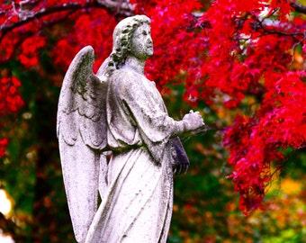 Angel Digital Photography ,fine art ,print 8x10 , Home Decor