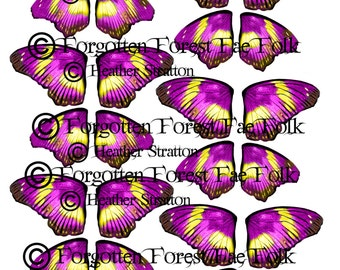 Pink & yellow butterfly wing sheet