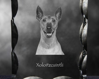 Xoloitzcuintli, Mexican Hairless Dog  , Cubic crystal with dog, souvenir, decoration, limited edition, Collection