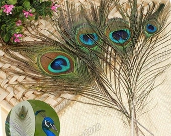 Real feather peacock feathers 5 piece (A 965)
