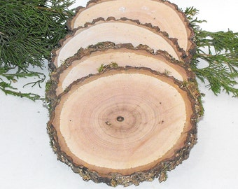 6  Large wood Slices ~ 4-4.5 inches ~ Crafts ~ Fairy Gardens ~ Wood Burning ~ Rustic Wedding Decor ~ Painting Therapy ~ DIY Wood Coasters