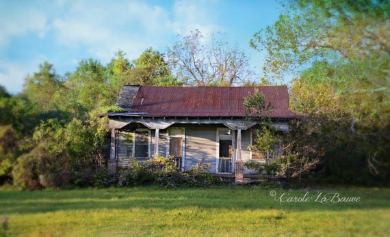 ACADIAN CABIN ~ Color or Black and White Image ~ Abandoned Cabin ~ Cajun Decor ~ Creole Cottage ~ Louisiana at Large Series ~ 12 x 18 ~ AC2