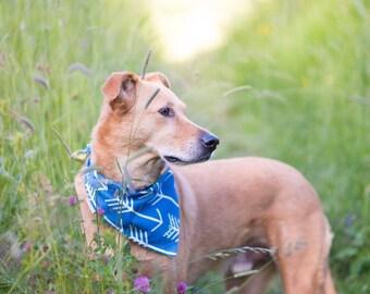 Blue Arrows Bandana Ready to Ship    Green Polka Dot    Reversible Classic Tie PupDana    Personalized Puppy Gift    Three Spoiled Dogs