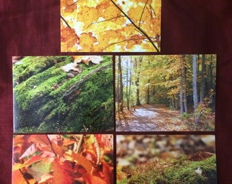 Canadian Fall Postcards Set Of Five