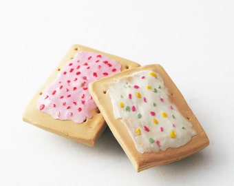Pop Tart Magnets, Breakfast Magnet Set of 2, Food Magnets, Miniature Food Magnets, Gift for Teen, Polymer Clay Magnet Set