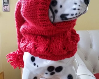 Dog hat red