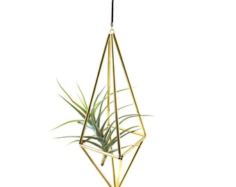 Large Brass Mobile with Air Plant (4 sided)