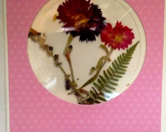 Handmade card with real pressed Bachelor Buttons & Fern on Pink Dotted Cardstock