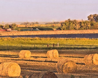 Art Print: PLATTEVILLE no. 43, country art, farm landscape, rural landscape, farm art, country landscape, rural art, country drawing, fields