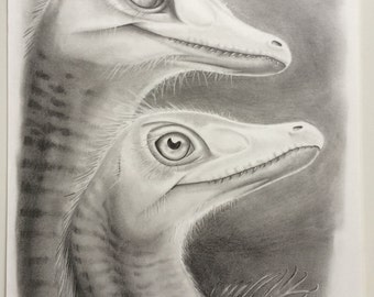 ORIGINAL drawing of a velociraptor couple, 16,5 x 11,7 inches