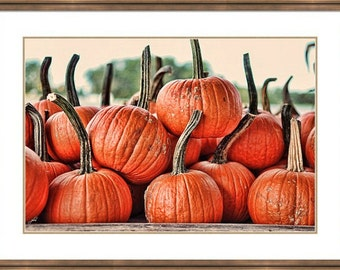 Dirty Little Pumpkins  fall autumn orange halloween fun photos prints photography child's room decoration decorate c-prints