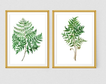 Fern print Watercolor plant print Botanical poster Green art Fern watercolor art
