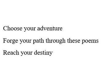 Choose-Your-Own-Adventure Haiku Set