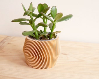Minimalist Geometric Wood Planter for succulents or cacti / Made in France