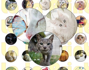 35 Kittens gital Party Stickers Circles size 1''' sheet A4 (8.5''x11'') Bottle Cap images Cupcake Toppers Pussy Cat