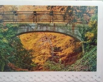 Longwood Bridge