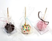 """25 Clear Cake Pop Bags . 2"""" x 2"""" x 8 1/4"""" High Clarity Bag with Flat Bottom Gusset and Paper Insert"""