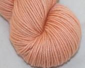 Apricot--Twinkle Cat DK- SW merino/silk double knitting