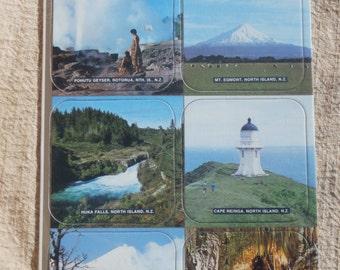 North Island New Zealand Souvenir Coasters, Cardboard Square Jason Brand