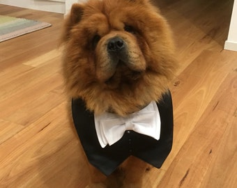 Tuxedo/Tux bib-style bandana for dogs or cats - custom made to order
