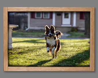 Pet Portrait on Real Wood Print, FREE SHIPPING Dog Lover Gift 16x20, Custom Pet Print,  Dog Photo Frame, Pet Photo, Pet Memorial Frame