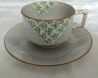 Edwein James Drew Bodley Tea Cup and Saucer; 19th century; Hand Painted  circa 1876-  DR
