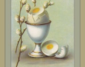 Soft Boiled Easter Egg- 1910s Antique Postcard- Pussy Willow Branches- Edwardian Easter Decor- Egg Cup- German Made- Paper Ephemera- Used