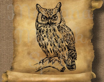 VINTAGE OWL on a BRANCH Royalty Free Illustration Wiccan Digital Image Download Printable Graphic Clip Art Transfers Prints