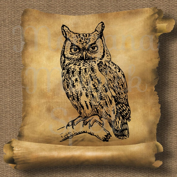 Vintage Owl on a Branch Royalty Free