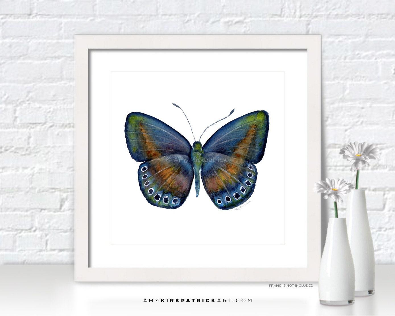 Blue BUTTERFLY Painting Butterfly Art by AmyKirkpatrickArt ... - photo#50